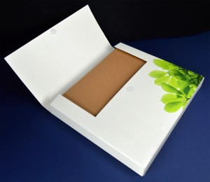 die-cut-box-cannelli-printing